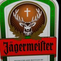 Gegrilltes Rinderfilet in Jägermeistermarinade